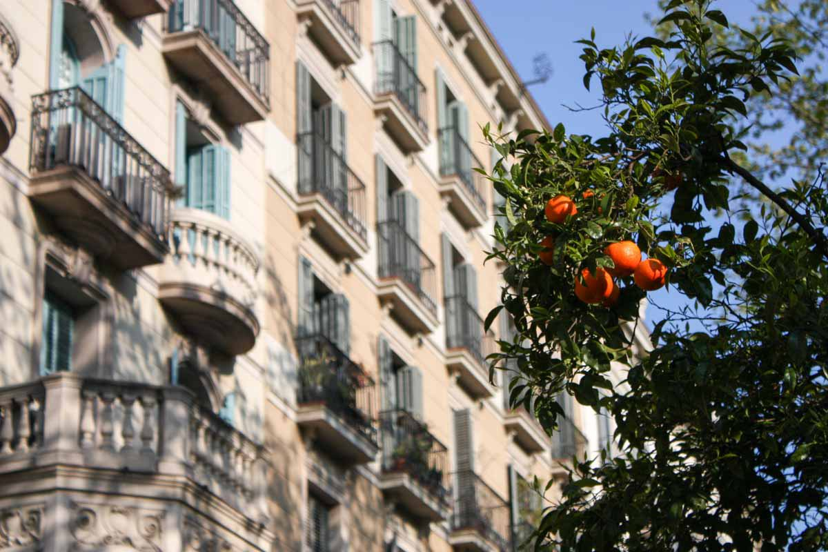 barcelona_first_time-4474