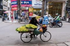 vietnam-1074